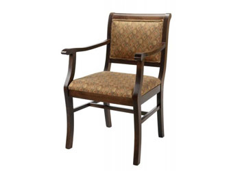 Dining or activity chair for health care homes